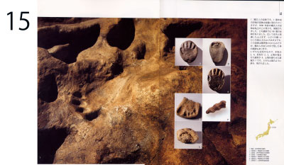 pp. 14-15